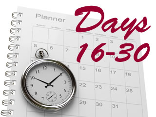 Creating a 60 Day Fundraising Plan: Days 16-30