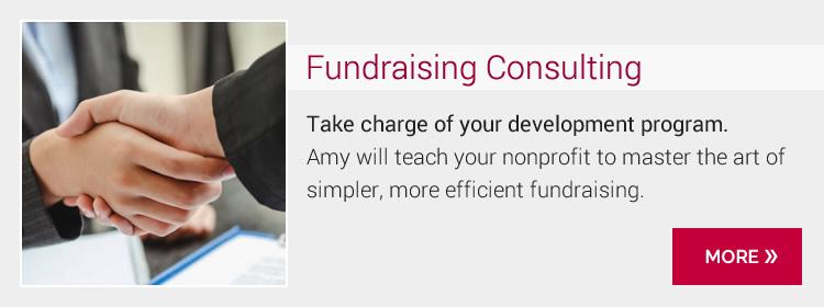 Fundraising Consultant Amy Eisenstein