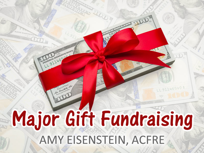 Major Gift Fundraising - An Online Guide by Amy Eisenstein