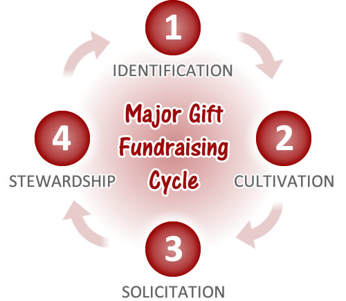 Major Gift Fundraising Cycle