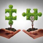 Cultivation: How to Build One-On-One Relationships with Your Donors